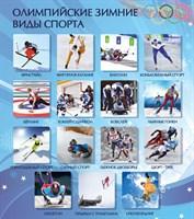 "Стенд ""Олимпийские зимние виды спорта, 80х90 см"